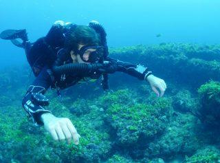 TDI-Diver-CCR-Фото