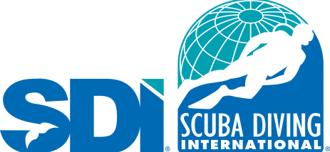 Transparent SDI Logo Color