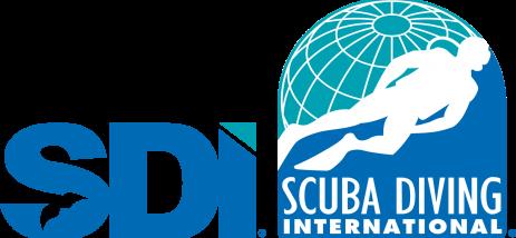 Color transparente del logotipo SDI
